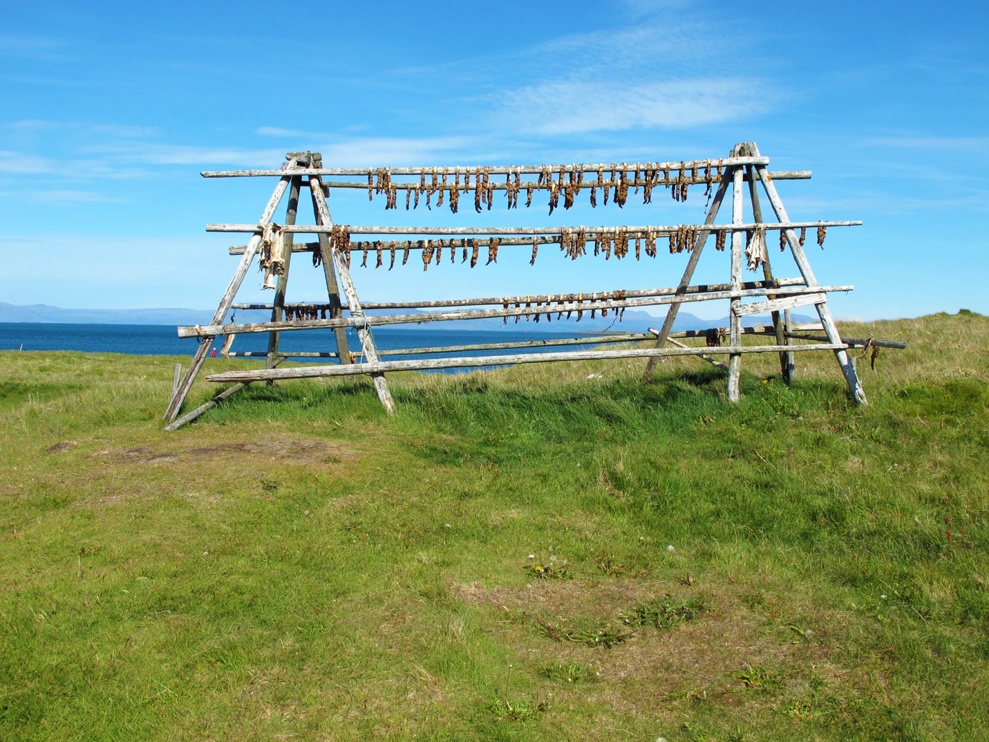 Iceland Dry Fish - Fishing in Iceland