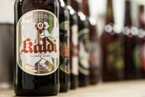 Iceland breweries - Iceland beer - things to do in Reykjavik